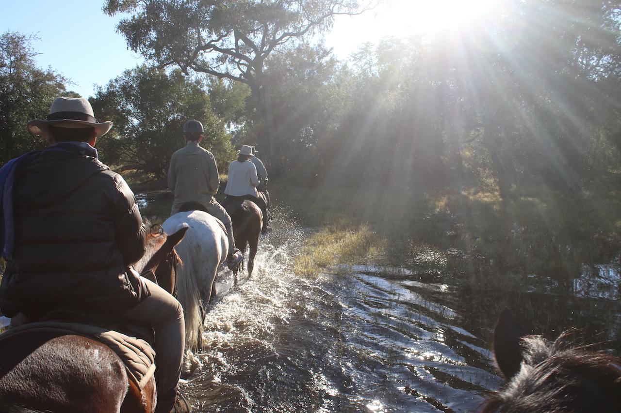 horse riding 1