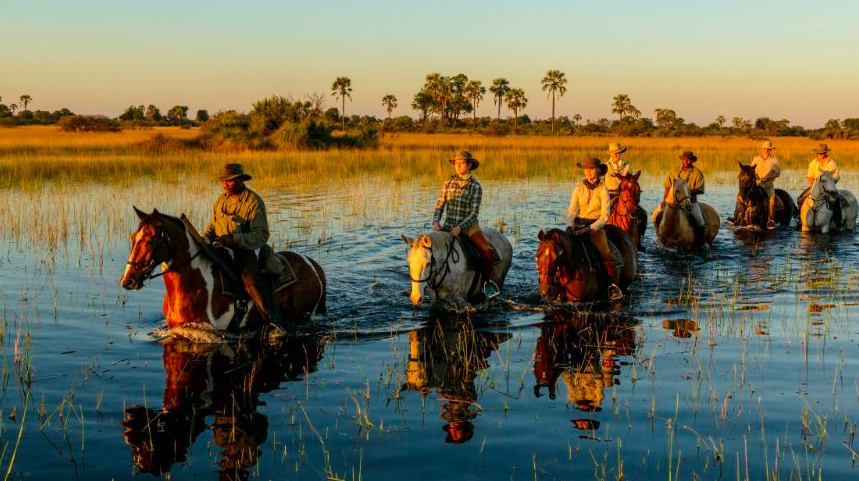horse riding in wetland