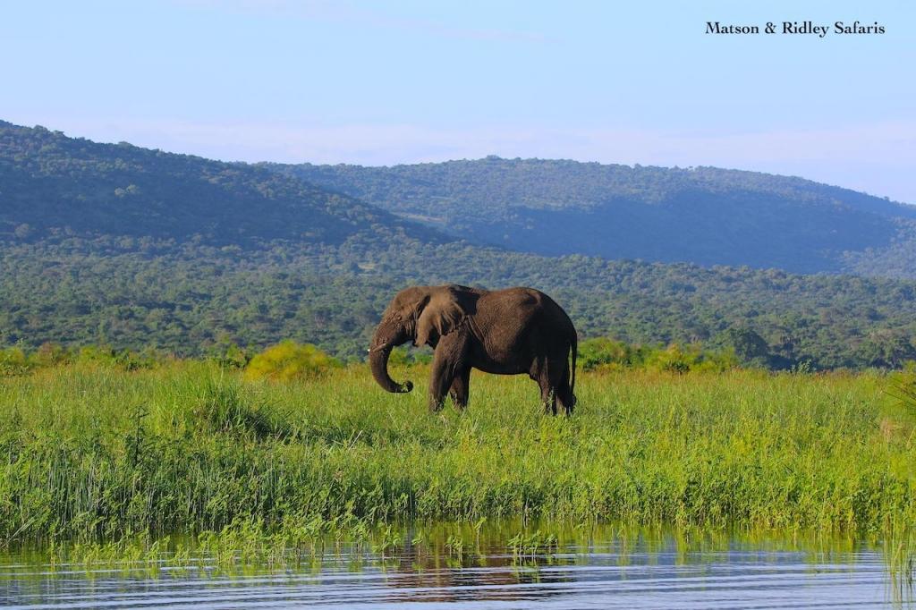 Gahembe on island Lake Ihema reduced
