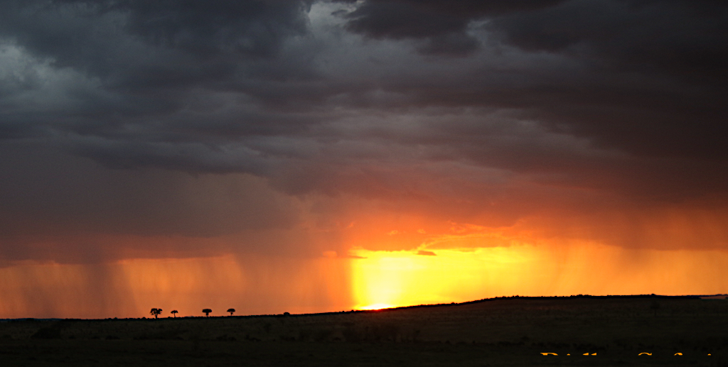 sunset rain Serengeti reduced for blog
