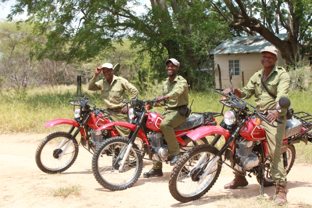 wild dogs guys on bikes reduced