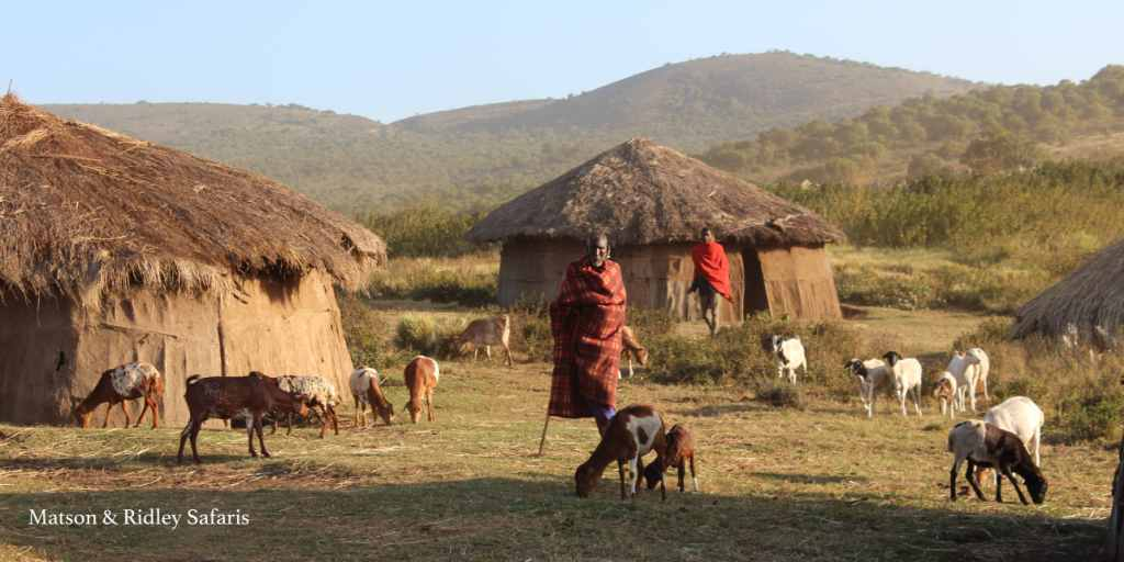 We visited this traditional Maasai village while staying at The Highlands