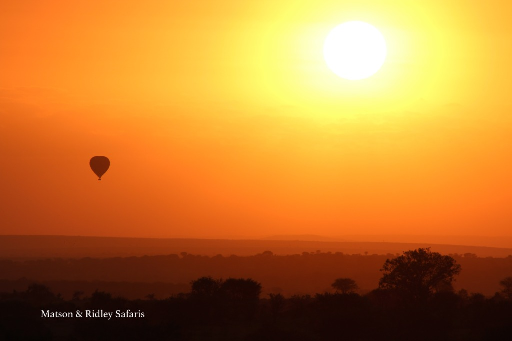 Sunrise over Serengeti - simply paradise.